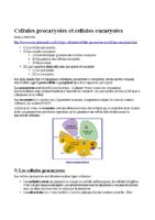 Cellules procaryotes et cellules eucaryotes_Mattieu SIMON