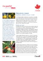 Phystosterol et stanols_Ingrésdients canadien bon pour la santé