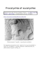 Procaryotes et eucaryotes_Godart-IGEAT-ULB